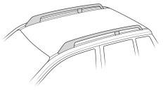 Thule Raised Roof Rail