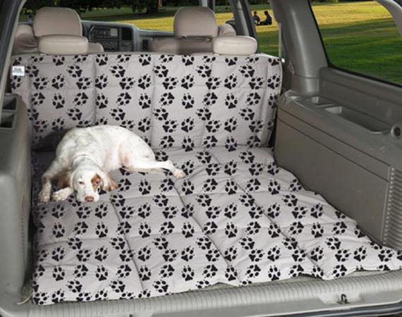 Paw-Pet-Cargo