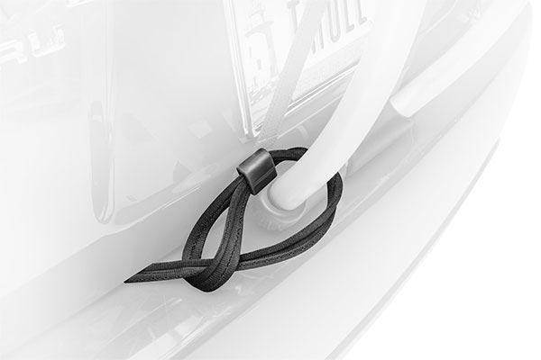 thule passive lock strap