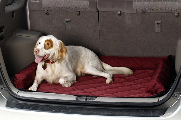 covercraft cargo area pet pad