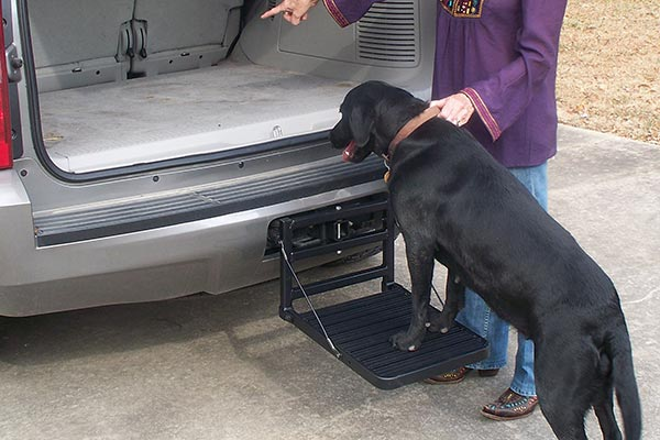Great Day Hitch Up Pet Step Free Shipping