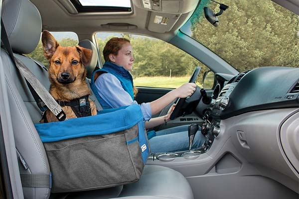 kurgo heather dog booster seat1 hero