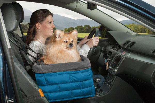 Kurgo Loft Dog Booster Seat
