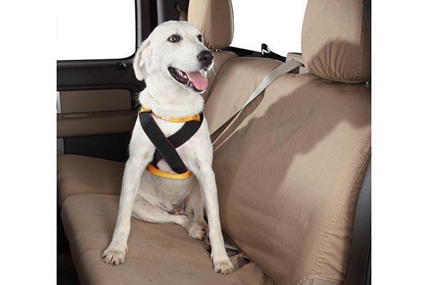 Ruff Rider Roadie Dog Harness Reviews
