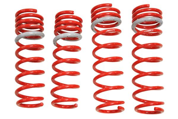 tanabe df210 lowering springs