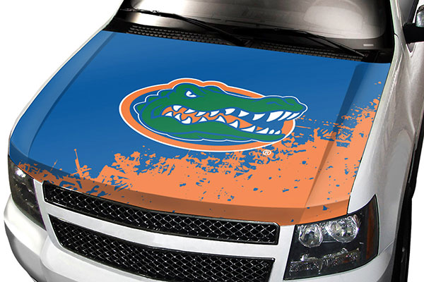 team promark ncaa hood cover