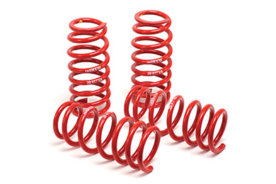 Ford Mustang H&R Race Lowering Coil Springs