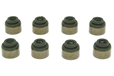 victor reinz valve stem seal