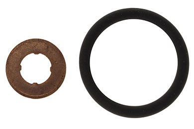 Victor Reinz Fuel Injection Seal