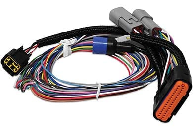Ford Mustang MSD Ignition Harness