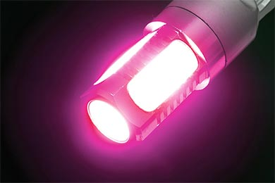 Ford Escape Putco Plasma LED Bulbs