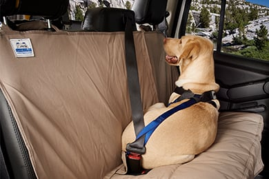 Mini Cooper Canine Covers Travel Safe Dog Harness