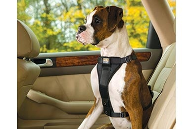 Nissan Titan Kurgo Crash Tested Tru-Fit Smart Dog Harness
