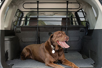 Buick Rendezvous Kurgo Wander Dog Car Barrier