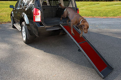 Chevy Camaro Kurgo Wander Dog Ramp