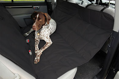 Lexus SC 400 PetEgo Hammock Seat Protector