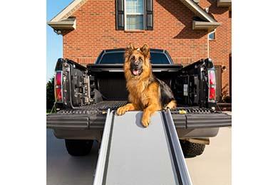 PetSafe Happy Ride Dog Ramps