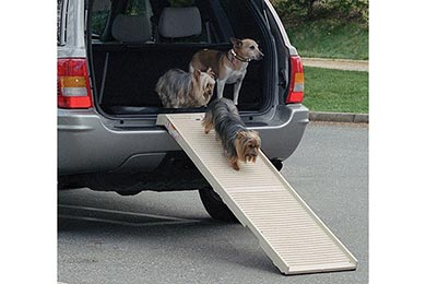 Buick Rendezvous PetSTEP Folding Pet Ramp