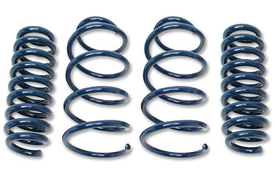 BMW 5-Series Dinan Performance Lowering Springs