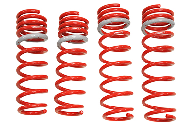 Mazda Protege Tanabe DF210 Lowering Springs