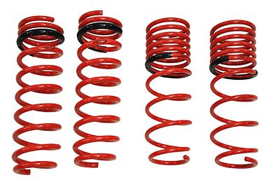 tanabe gf210 lowering springs