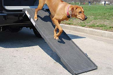 Volkswagen Beetle WeatherTech PetSTEP Folding Pet Ramp