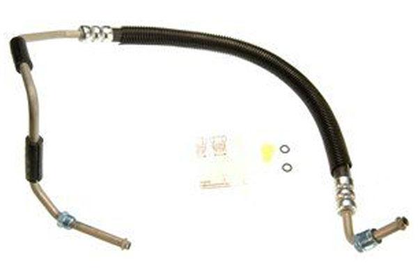 ZP 362430 Fro