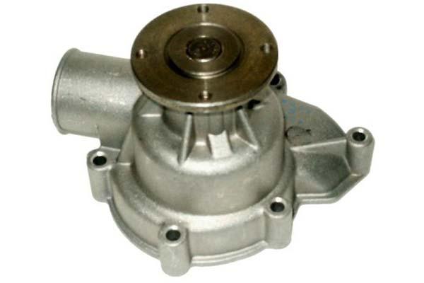 ZW 41035 Bac