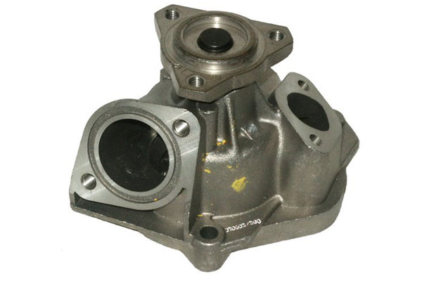 ZW 41153 Bac