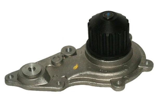 ZW 42035 Bac