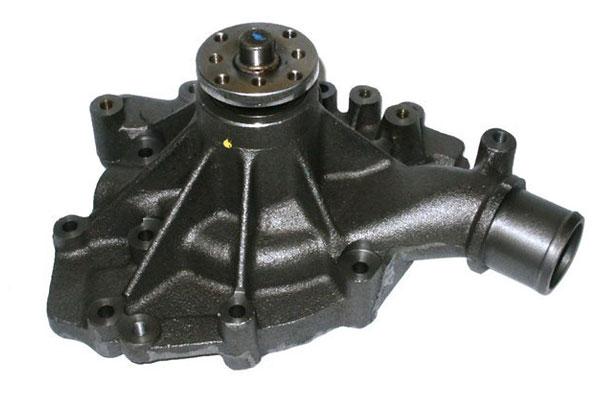 ZW 44023 Bac