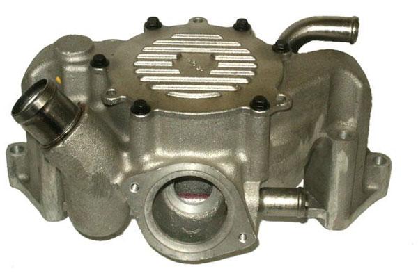 ZW 44036 Bac