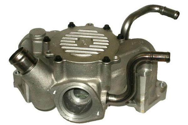 ZW 44038 Bac