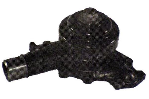 ZW 44056 Bac