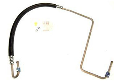 ZP 368980 Fro