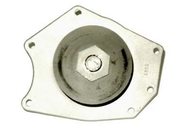 ZW 41070 Bac