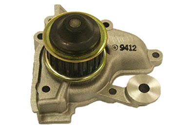 ZW 41134 Bac