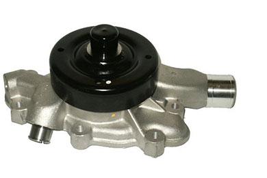 ZW 43037 Bac
