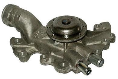 ZW 43055 Bac