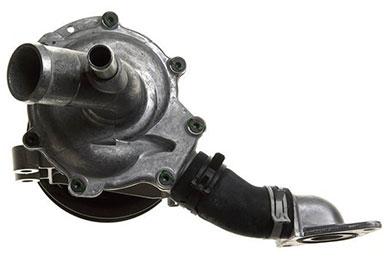 ZW 43535 Bac