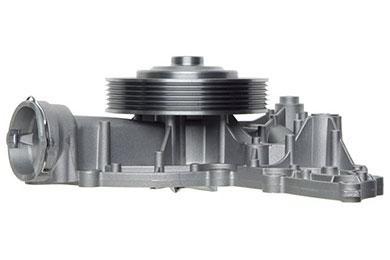 ZW 43552 Ang
