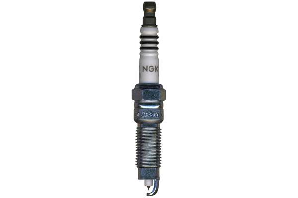 NG 0372 Fro