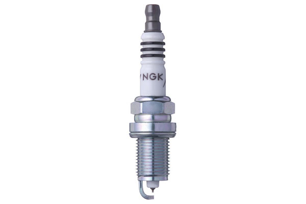 NG 2477 Fro