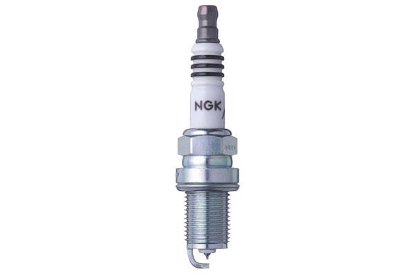 NG 3306 Fro