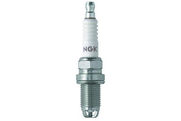 NG 4563 Fro