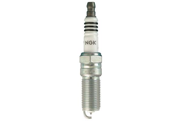 NG 6509 Fro