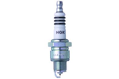 NG 4085 Fro