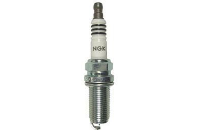 NG 4469 Fro
