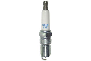 NG 5599 Fro