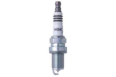 NG 5691 Fro